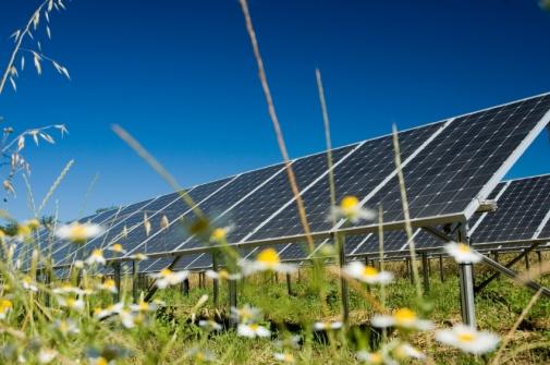 solar-garden